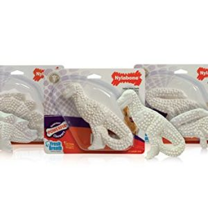 Nylabone Dura Chew Original Flavored Dental Dinosaur Chew Toy, Dinosaur Style Varies