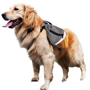 Kurgo Max Dog Backpack