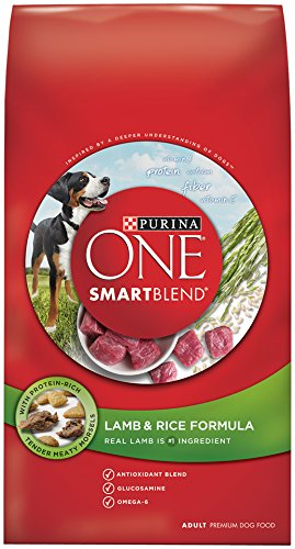 Purina ONE SmartBlend Dry Dog Food, Lamb & Rice Formula, 31.1-Pound Bag, Pack of 1